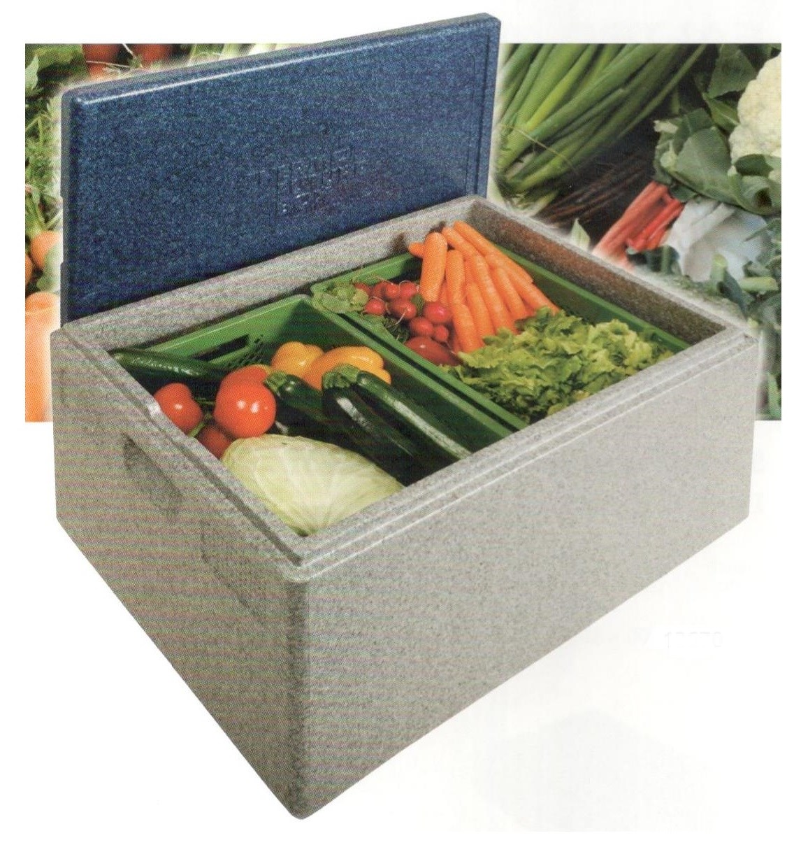 thermobox maxi 2